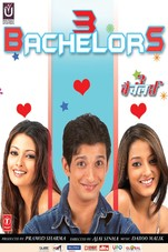 3 Bachelors Small Poster
