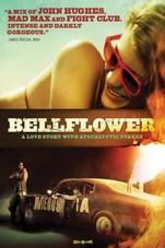 Bellflower Small Poster