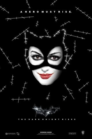 The Dark Knight Rises - Movie Poster #7 (Small)