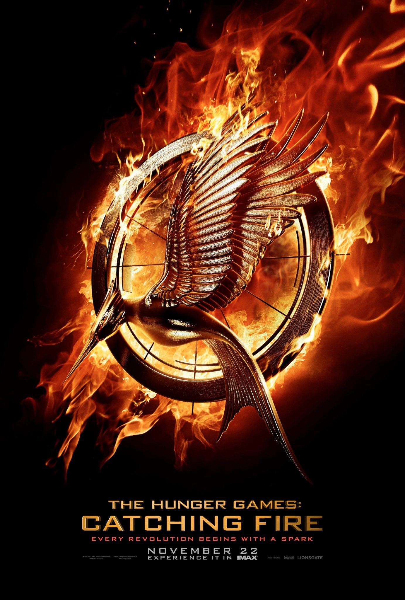 The Hunger Games: Catching Fire - Movie Poster #14 (Original)