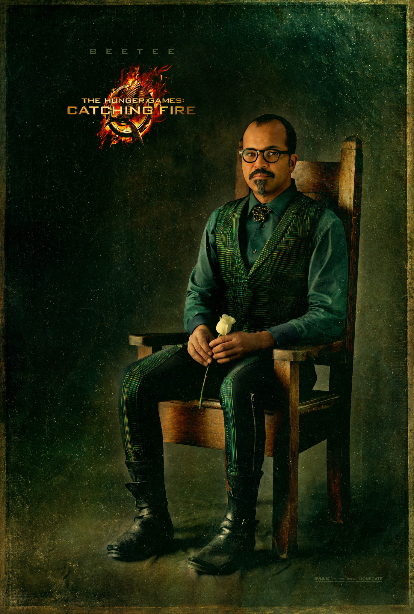 The Hunger Games: Catching Fire - Movie Poster #4 (Original)