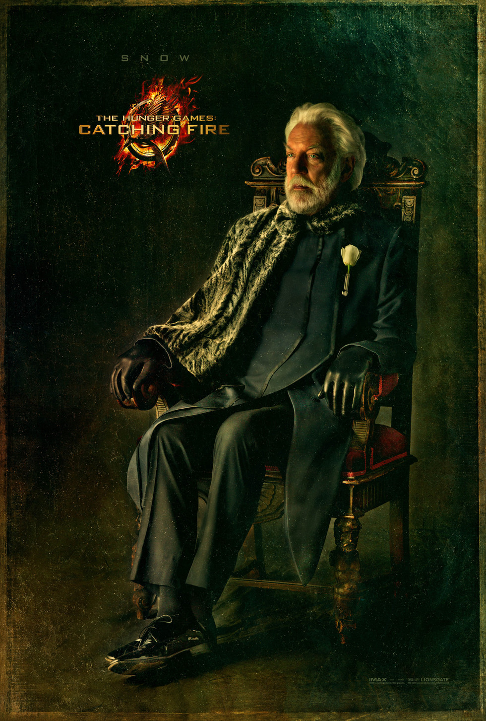 The Hunger Games: Catching Fire - Movie Poster #5 (Large)