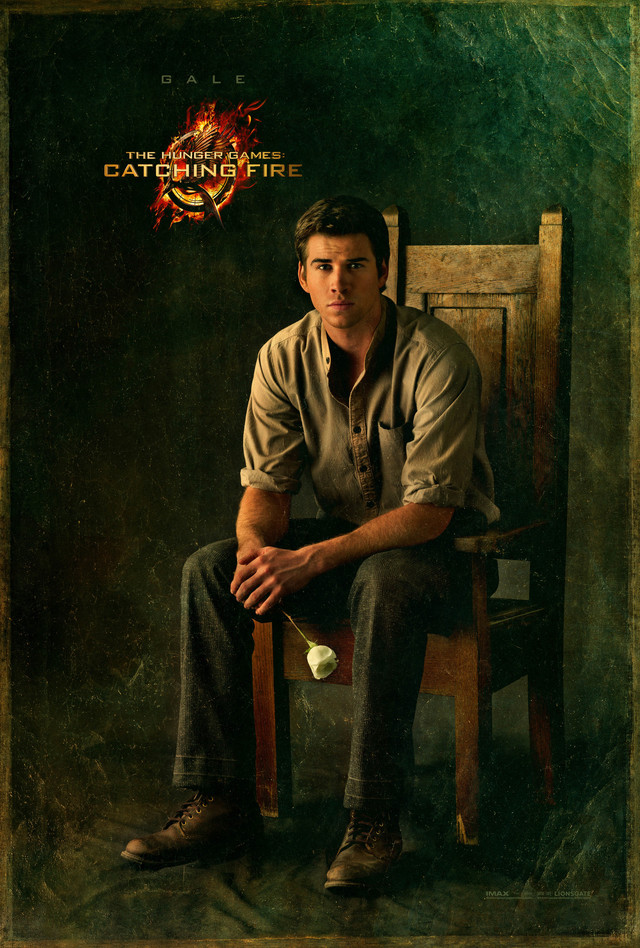The Hunger Games: Catching Fire - Movie Poster #7