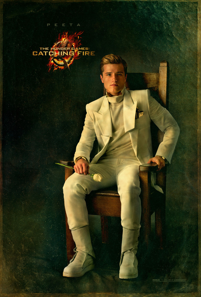 The Hunger Games: Catching Fire - Movie Poster #8