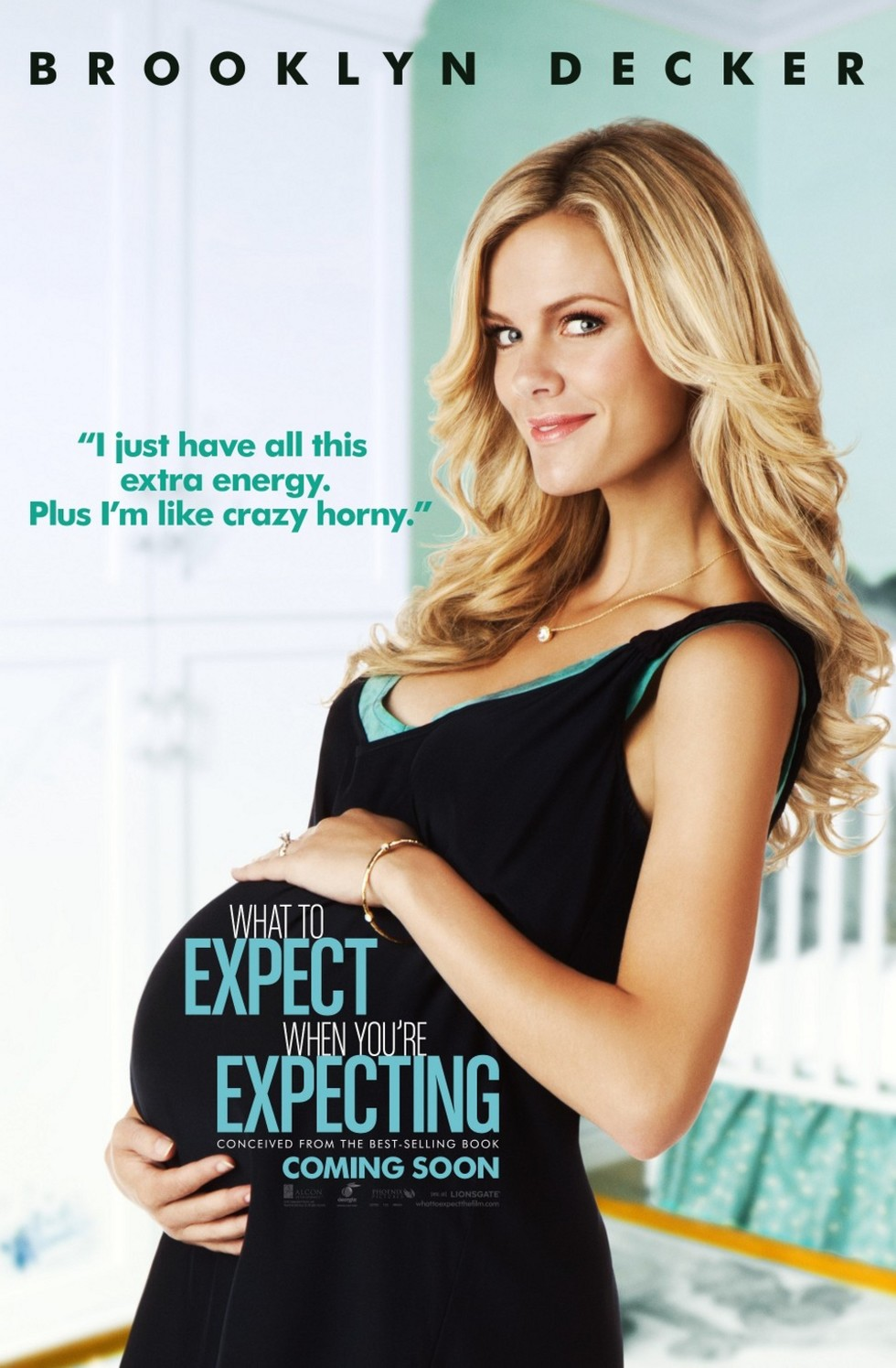 What to Expect When You're Expecting - Movie Poster #1 (Large)