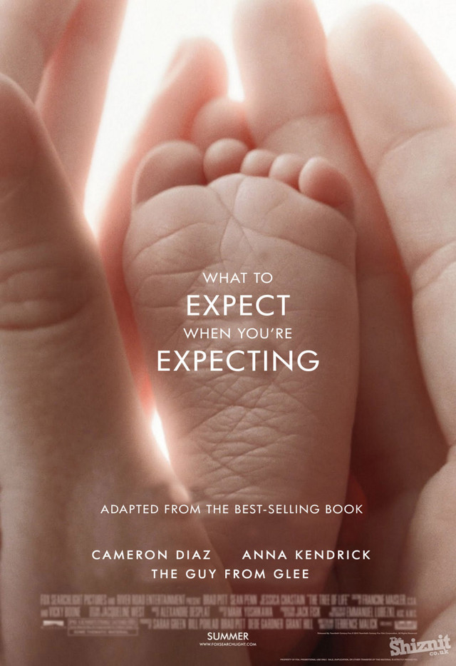What to Expect When You're Expecting - Movie Poster #6